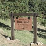 Burland Ranchettes Stone Wood Bailey
