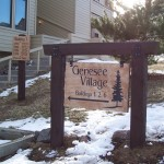 Genesee Village Directional Stone Wood Golden