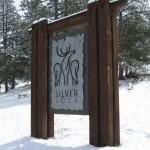 Silver Rock MDX Wood Golden